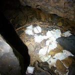 Contaminación de un Ambiente Subterráneo por Basura